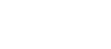 Direct Solutions (DSG)